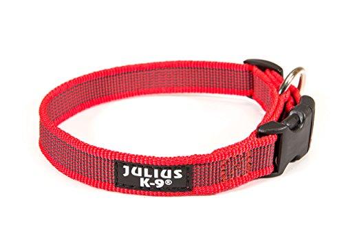 Julius-K9 - Collar para...