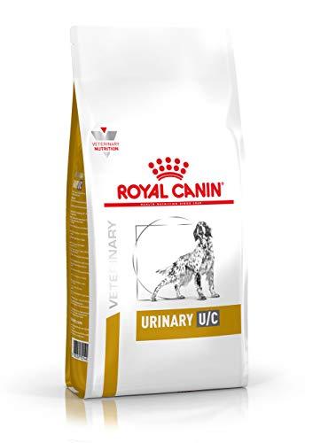 ROYAL CANIN Alimento para...
