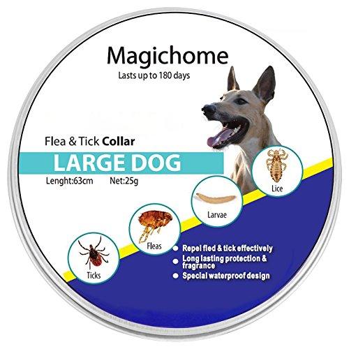 Magichome Collar...