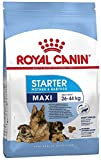 Royal Canin C-08442 S.N....