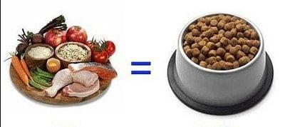 dieta barf es mejor que las croquetas
