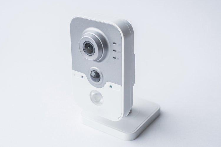 cámaras para perros