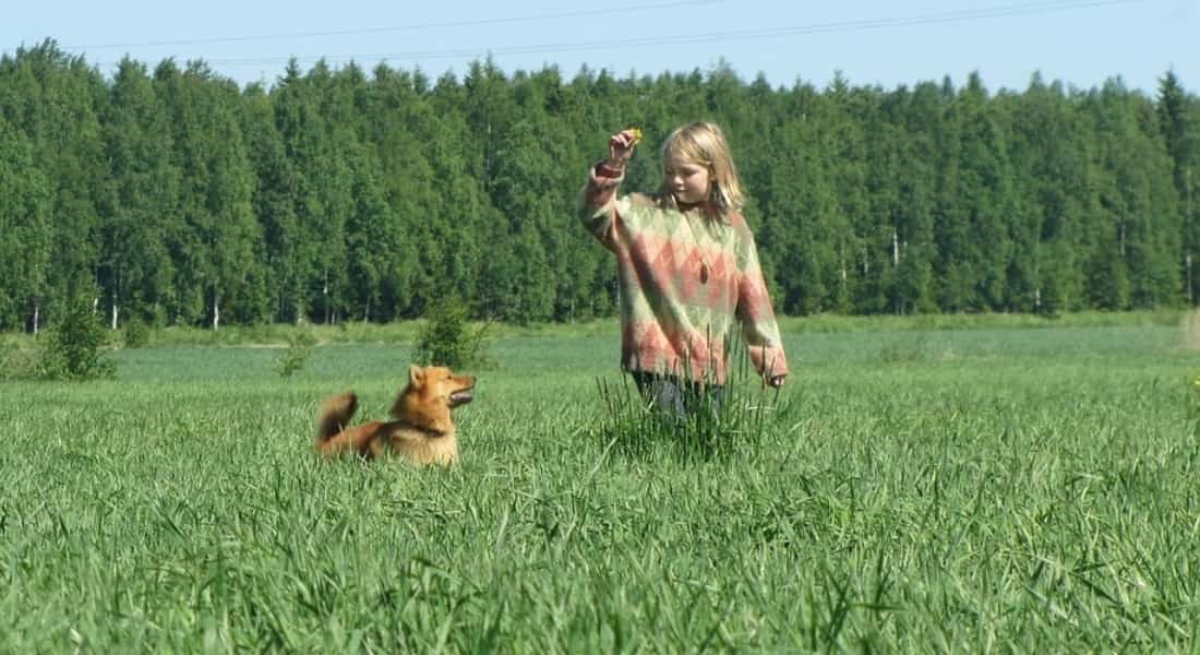 Portarse bien para conseguir perro